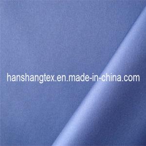Pongee Fabric(HS-C2036)