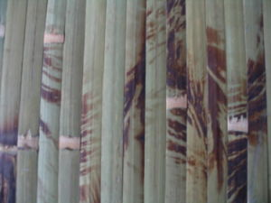 Green Bamboo Wallpaper / Bamboo Wall Covering