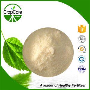NPK Water Soluble Fertilizer 17-17-17 Manufacturer pictures & photos