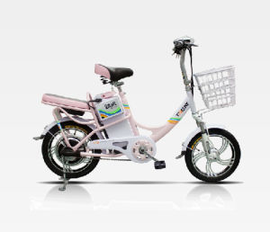 New Style Passenger E-Bicycle