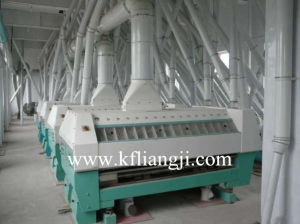 Hot Sale 500t/D Wheat Flour Mill