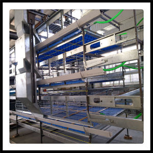 Types of Battery Cage System in Poultry for Broilers pictures & photos
