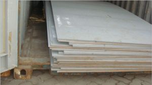 Steel Plate for Shipbuilding and Offshore Platforms (2HGr50) pictures & photos