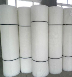 Plastic Flat Netting /HDPE Hexagonal Plastic Flat Mesh for Agriculture pictures & photos