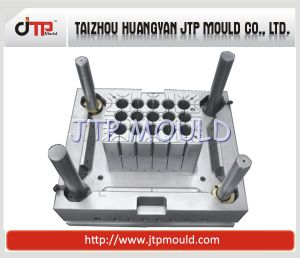 OEM High Quality 2 Cavities Crate Mould pictures & photos