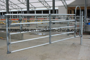 Hot Galvanized Cattle Yard Panel pictures & photos