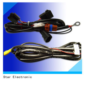 China Factory Customized Automotive Wire Harness Electric pictures & photos