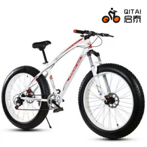 26*4.0 Fat Tire Mountain Bicycle with Gear 21 Speed pictures & photos