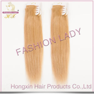 Russian Top Quality Remy Human Hair Extension (HX-RU-235)