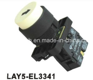 Lay5-EL3341spring Return Convex Push Button pictures & photos