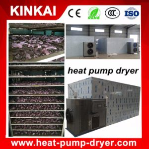 Air Dryer Red Dates Drying Machine/ Carrot Dehydrator pictures & photos