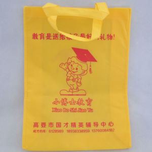Advertising Non Woven Bag for Promotion Gift pictures & photos