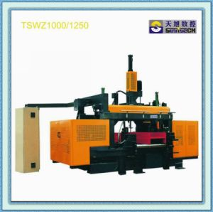 Steel Fabrication CNC Beam Drilling Machine (TSWZ1000)