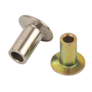 Rivet for Auto Part in Steel and Aluminum pictures & photos