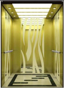 Professional Passenger Elevator with Small Machine Room (RLS-241) pictures & photos