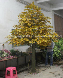 Factory Hot Sale Decoration Artificial Fake Synthetic Ginkgo Tree pictures & photos