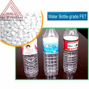 Polyester Chips (Bottle Grade) (HM--302)
