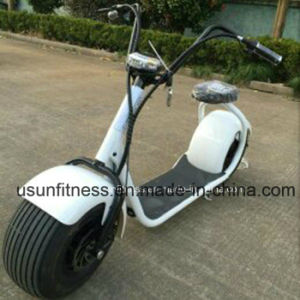 1000W Electric Bike and Electric Scooter and Electric Motorcycle pictures & photos