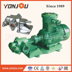 for Oil and Machinery Gear Type Oil Pump pictures & photos