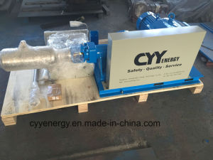 Large Flow and High Pressure for LNG Liquid Oxygen Nitrogen Argon Piston Pump pictures & photos