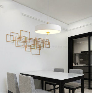 Creative Pendant Aluminum Hanging LED Lights with Ce Certification pictures & photos