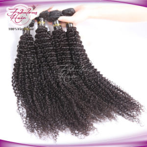 Double Drawn Kinky Curly Remy Virgin Brazilian Hair pictures & photos