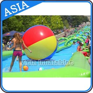 Custom Inflatable Water Slide City Street, Adults Wet/Soap Slide, Children Waterslide Inflatable Slip The City pictures & photos