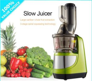 Restaurant Electric Commercial Fruit Juicer/Best Fruit Vegetable Juicer/Carrot Juicer pictures & photos