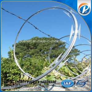 Low Price Concertina Spiral Cheap Razor Barbed Wires pictures & photos