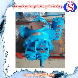 Double Screw Pump with Stable Operation and Low Price pictures & photos