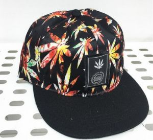 Colorful Leaves Pattern Hiphop Cap pictures & photos