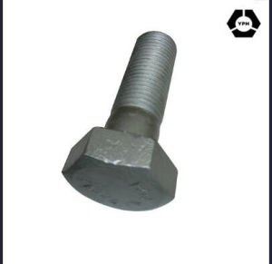 Heavy Hex Bolt A325 for HDG pictures & photos
