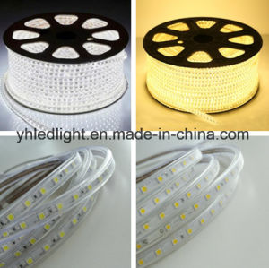110V/220V High Voltage 5050 LED Strip 3000k/4000k/5000k/6000k/R/G/B/Y Dimmable Light pictures & photos