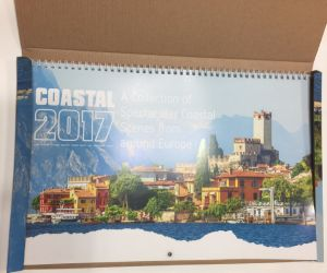 Desk/Wall Calendar for Gifts Company pictures & photos