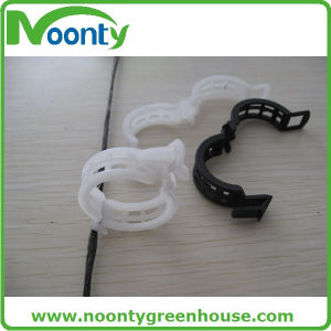 Tomato Plastic Clip for Vegetable & Fruit Growing pictures & photos