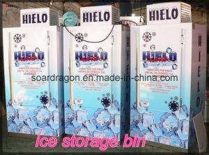 Customized Logo Ice Storage Bin pictures & photos