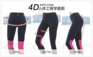 Summer Fashion Plus Size Women Jogging Leggings pictures & photos