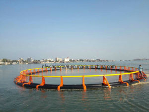 Floatingng Fish Farming Cage for Sea Fish Breeding pictures & photos