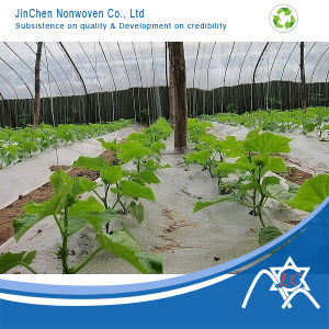 100% PP with 3%UV Treated Nonwoven Fabric for Greenhouse Cover pictures & photos