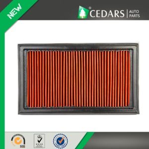 Hot Selling Lifan Air Filter with 12 Years Experience pictures & photos