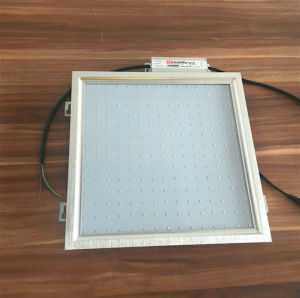300*300mm 23W SMD2835 LED Plan Grow Light Panel pictures & photos