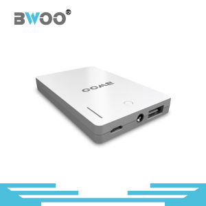 Bwoo Private Polymer 2600mAh Power Supply with Lighting pictures & photos