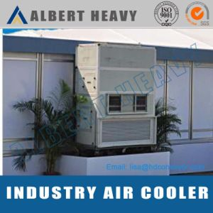 Commercial Air Heating and Cooling Systems pictures & photos