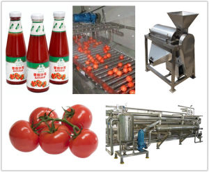 Cold Break Tomato Paste 30-32% Produced in Xinjiang, High Lycopene and Good Color pictures & photos