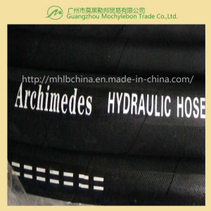 Wire Spiral Hydraulic Hose (EN856 4SP-3/8) pictures & photos