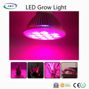 Energy-Saving High Quality LED Grow Light for Hydroponics pictures & photos