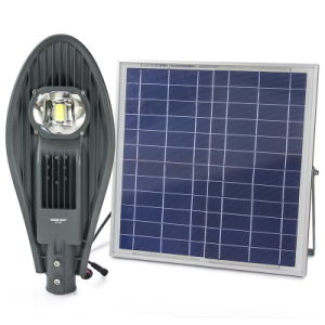 20W Solar Powered Panel LED Automatic Control Street Light pictures & photos