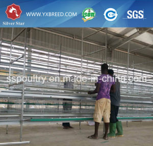 Battery Supplier Kenya Chicken Cage for Sale pictures & photos
