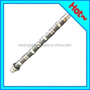 Chilled Cast Iron Camshaft for Honda 14120-Rah-H00 pictures & photos