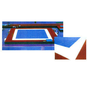 Spring Floor Exercises Field Gymnastics Equipment for Competition pictures & photos
